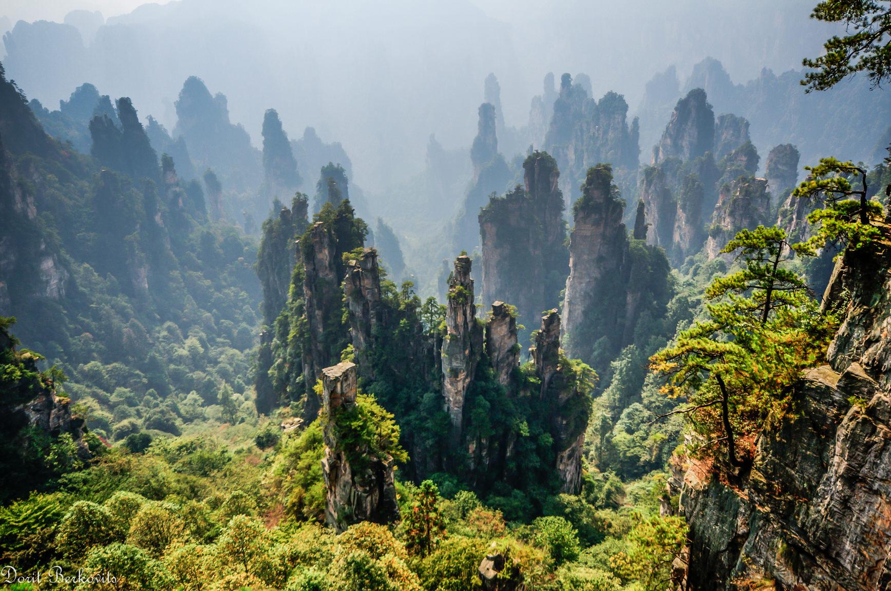 נוף מהסרטים בדז'אנג-ג'יה-ג'יה (צילום: דורית ברקוביץ)